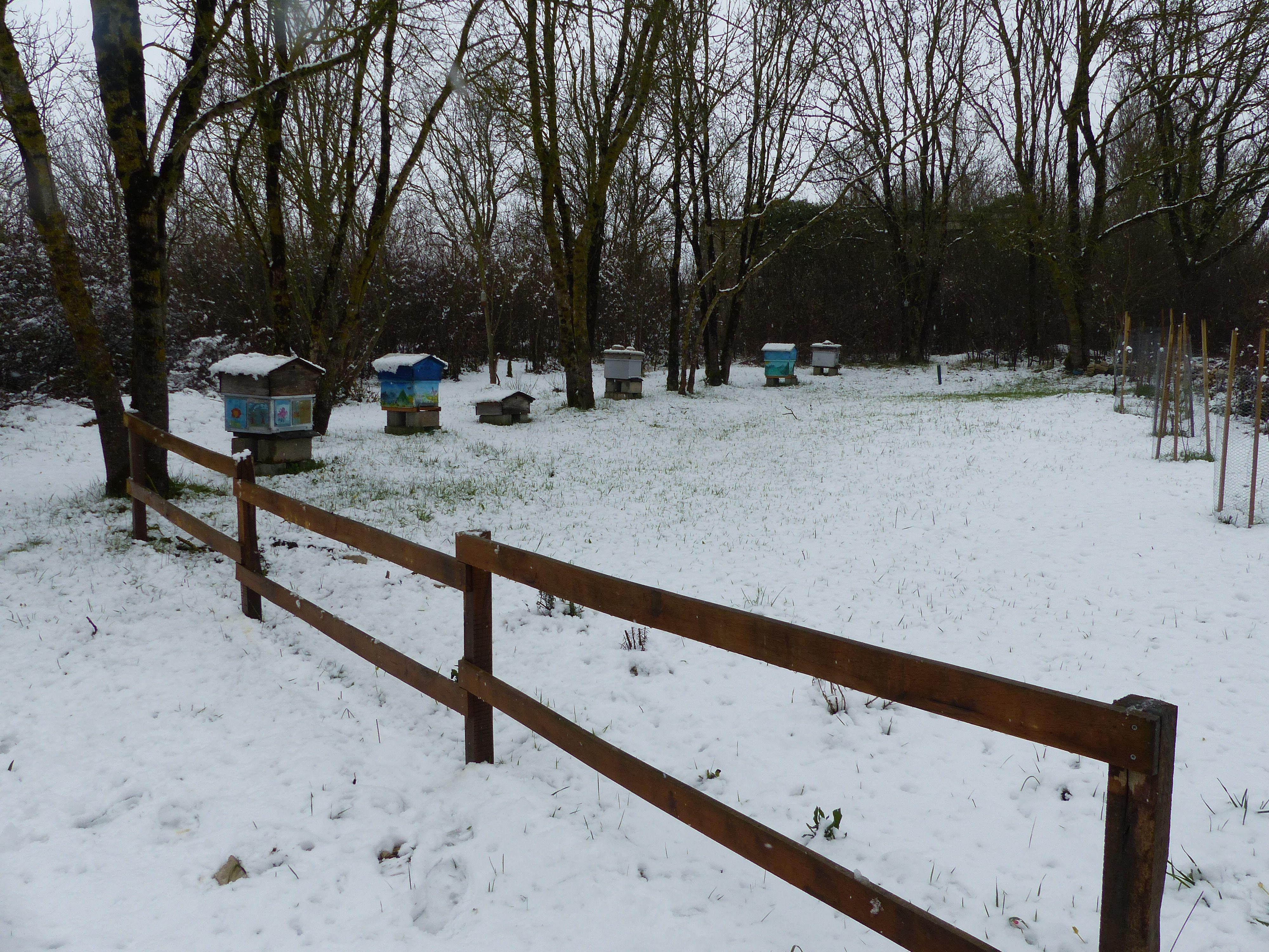 ruchée sous la neige